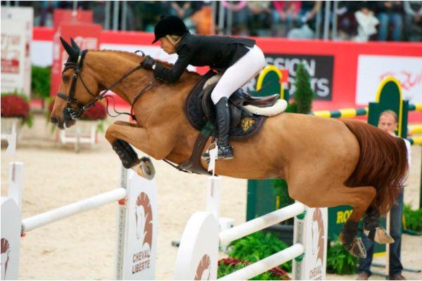 caballo palloubet D'halong