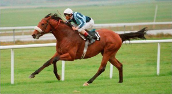 caballo seattle dancer